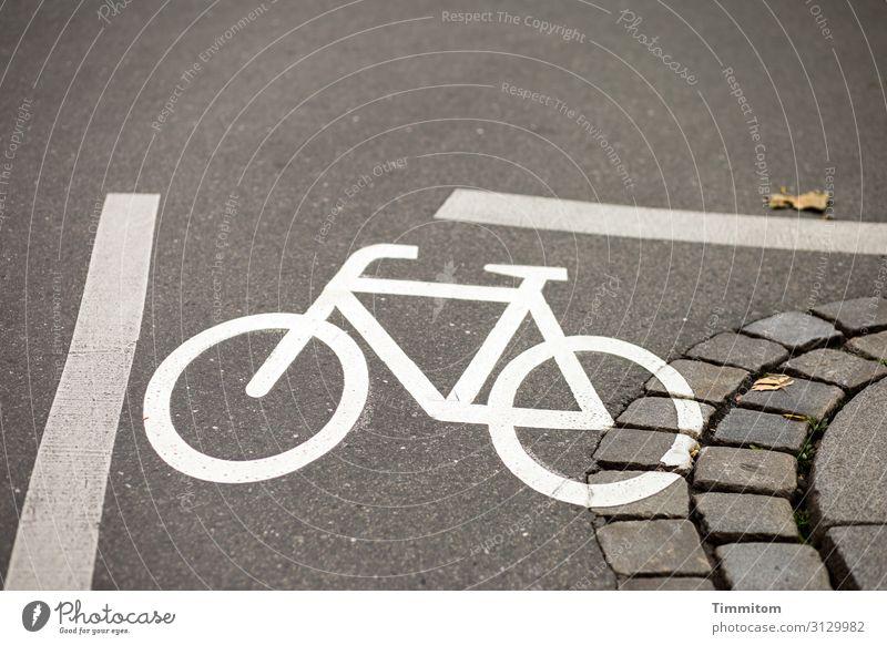 Könnte eng werden... Straße Asphalt Markierung Fahrrad Kurve Pflasterung Linien Piktogramm Orientierung Menschenleer Farbfoto