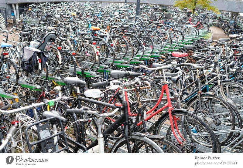 Zahlreiche Fahrräder auf einem speziellen Parkplatz in Rotterdam Fahrrad Niederlande Parkhaus Fahrradfahren Straße Metall Stahl grau schwarz parken Farbfoto
