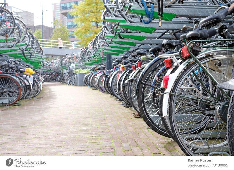 Fahrrad-Parkplatz in Rotterdam Stadt Stadtzentrum Fahrradfahren Straße Metall Stahl grau grün schwarz Freizeit & Hobby Farbfoto Außenaufnahme Textfreiraum links