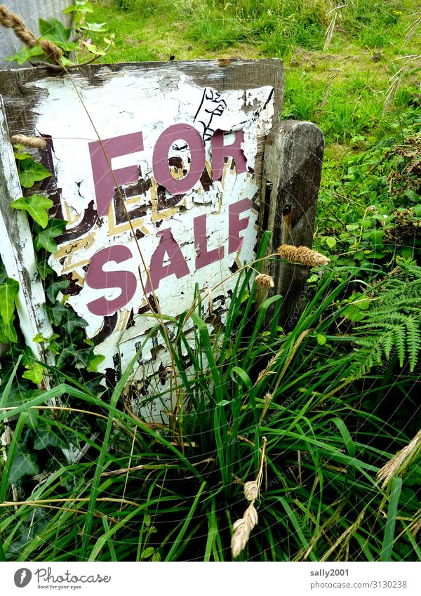 Ladenhüter... Gras Garten Holz Schriftzeichen Schilder & Markierungen Hinweisschild Warnschild verkaufen alt Originalität Einsamkeit Endzeitstimmung Verfall