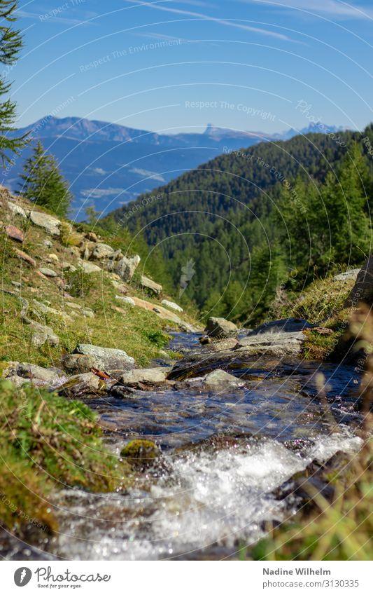 Bergbach mit Bergblick Natur Landschaft Pflanze Erde Wasser Himmel Horizont Sommer Schönes Wetter Gras Alpen Berge u. Gebirge schön Wärme blau braun grün weiß