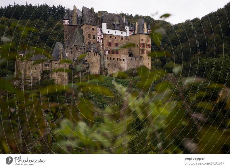 Burg ELTZ Ferien & Urlaub & Reisen Tourismus Ausflug Abenteuer Natur Landschaft Pflanze Baum Wald Hügel Burg oder Schloss Mauer Wand Fassade Sehenswürdigkeit