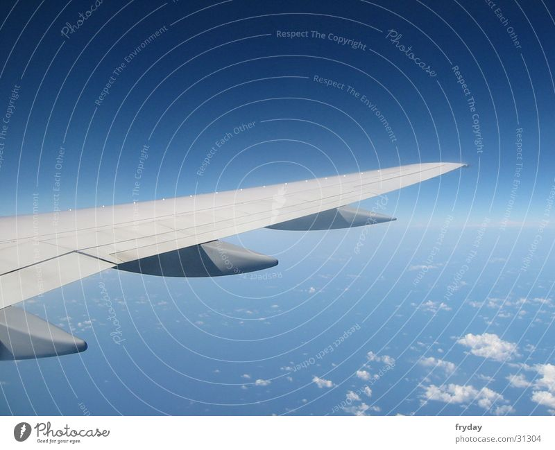 wing Himmel blau Wolken Flugzeug Horizont Luftverkehr Flügel