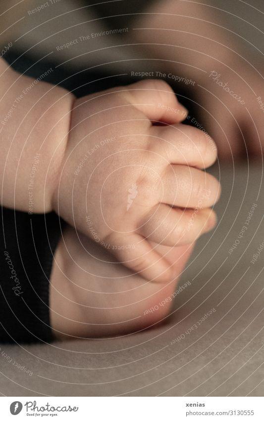 Fingerspitzengefühl / Babyhand umgreift Babyfuß Hand Fuß 1 Mensch 0-12 Monate festhalten sitzen Spielen klein weich Geborgenheit Kindheit Vertrauen Intuition
