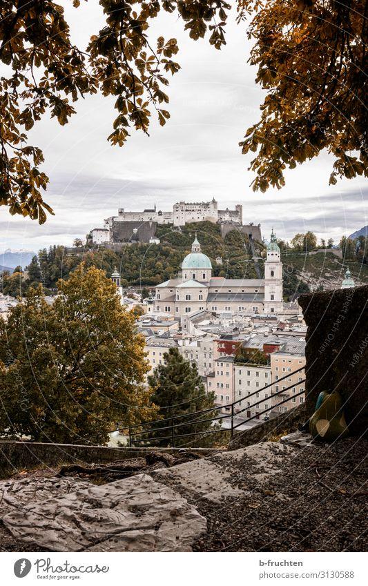 Salzburg Stadtansicht Herbst Landschaft Wolken Pflanze Sträucher Altstadt Skyline Kirche Dom Burg oder Schloss Bauwerk Mauer Wand Sehenswürdigkeit Wahrzeichen