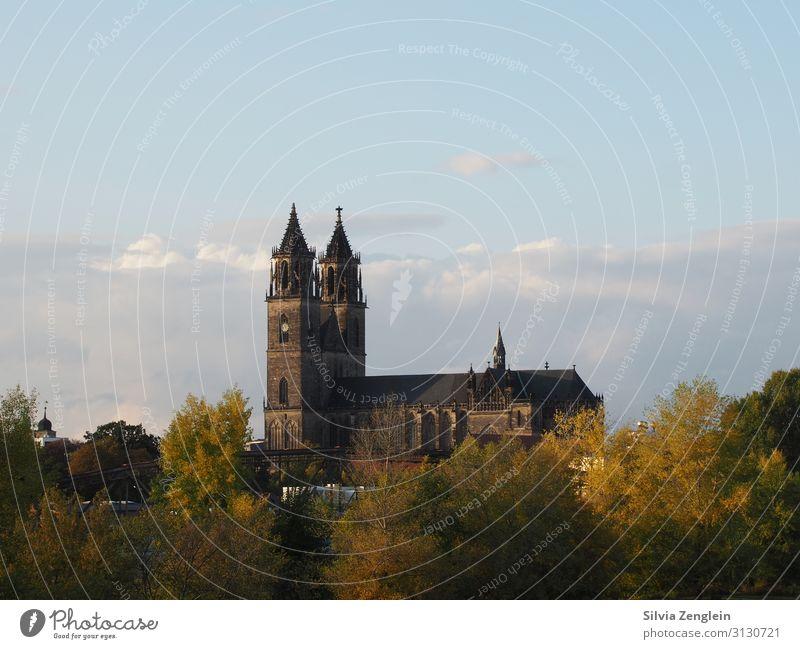 Magdeburger Dom Ferien & Urlaub & Reisen Tourismus Ausflug Städtereise Museum Kunstwerk Architektur Stadt Hauptstadt Kirche Fassade Sehenswürdigkeit Wahrzeichen