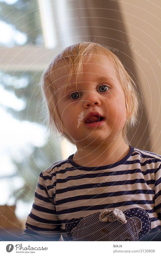 Blondes, interessiertes, neugieriges Kind im blauen Ringelshirt, zu Hause vor dem hellen Fenster mit Lichteinfall, schaut in die Kamera. Kulleräugiges, Schleckermäulchen beobachtet, gebannt, erwartungsvoll die Familie. Verträumtes Kleinkind träumt Tagtraum