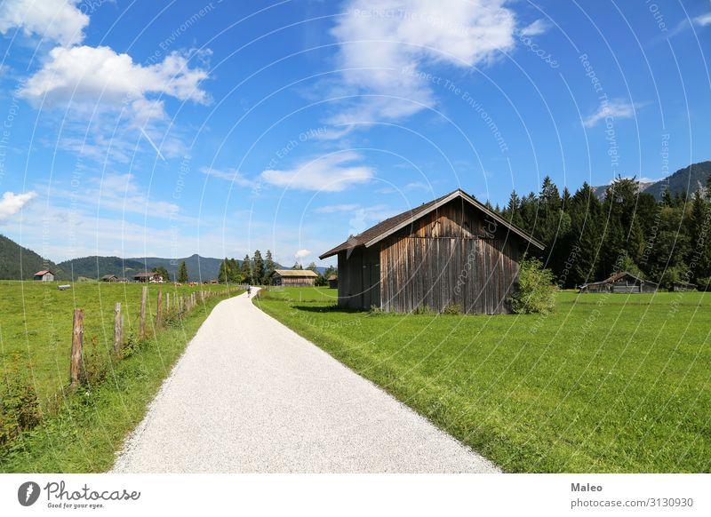 Berghütten auf grünen Wiesen in den Alpen Österreich Bayern blau Europa Feld Wald Gras wandern Hügel Ferien & Urlaub & Reisen Haus Hütte Landschaft