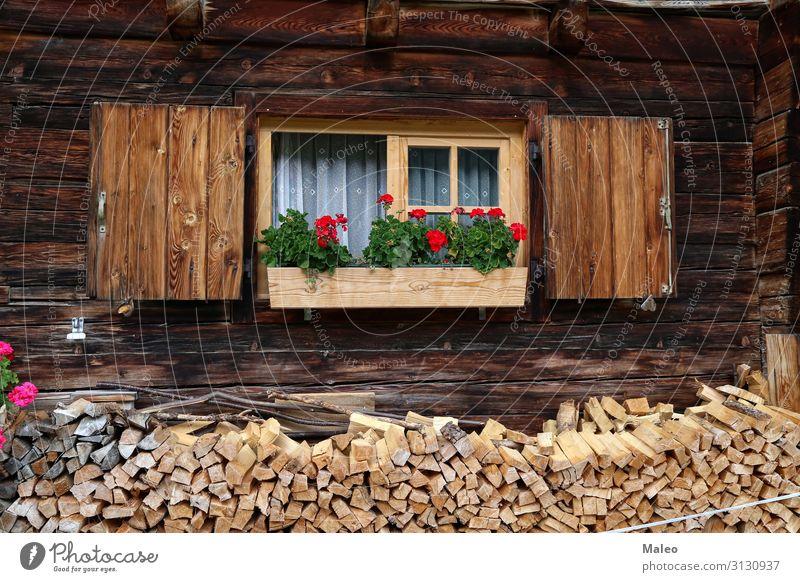 Schöne Pelargonie auf dem Fenster eines Holzhauses Kasten Architektur Außenaufnahme Blume Dekoration & Verzierung Glas Haus Wohnung Wand grün alt Fassade rot