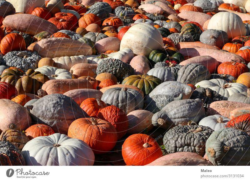 Frische gesunde Biokürbise auf einem Agrarmarkt im Herbst Basar Bioprodukte Biologische Landwirtschaft mehrfarbig Essen zubereiten kochen & garen Bauernhof