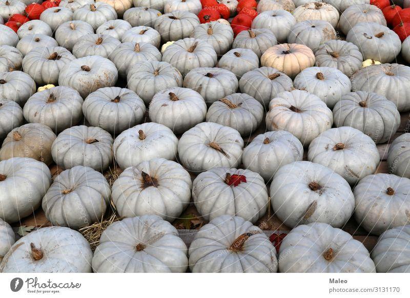 Frische gesunde Biokürbise auf einem Agrarmarkt im Herbst. Basar Bioprodukte Biologische Landwirtschaft mehrfarbig Essen zubereiten kochen & garen Bauernhof