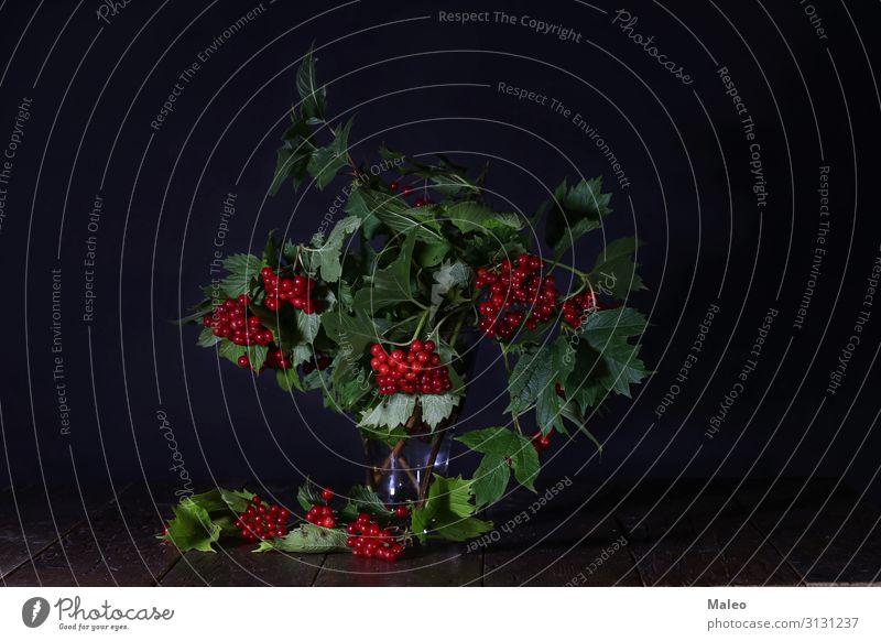 Zweige mit roten Beeren in einer Glasvase lecker Herbst Hintergrundbild schön Blumenstrauß Ast Dekoration & Verzierung Pflanze selbstgemacht kalina Blatt