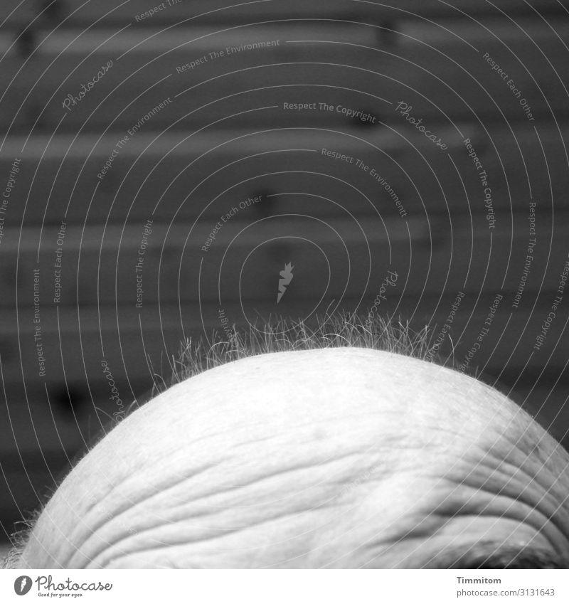 !Trash! 2019 | Haarenden Mensch Mann schön weiß schwarz Erwachsene Gefühle Haare & Frisuren Kopf grau Wachstum ästhetisch Armut Vergänglichkeit