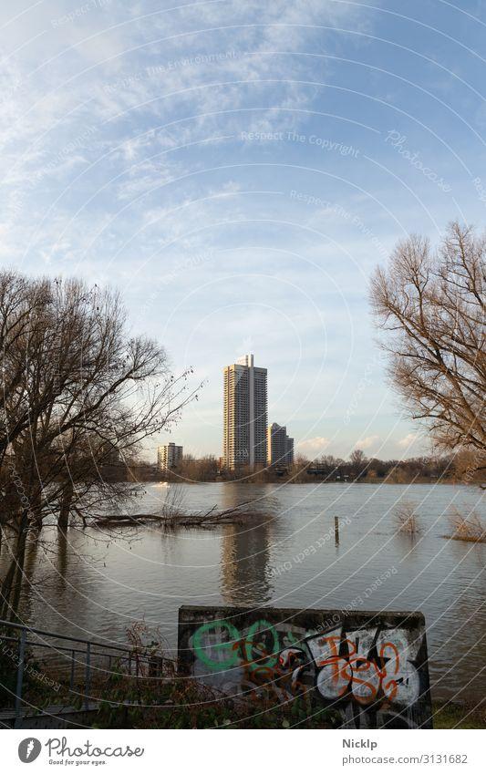 Colonia-Hochhaus - Rhein Hochwasser bei Köln-Mülheim Natur Wasser Himmel Wolken Winter Schönes Wetter Baum Gras Sträucher Park Flussufer Rhiel