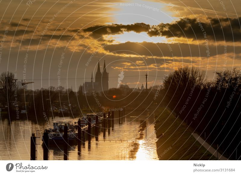 Blick auf Kölner Dom vom Köln-Mülheimer Hafen Himmel Wolken Sonne Sonnenaufgang Sonnenuntergang Sonnenlicht Herbst Winter Schönes Wetter Fluss Rhein