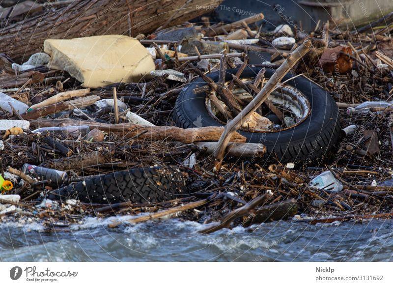 Müll und Treibgut im Rhein bei Köln (Hochwasser) Umwelt Wasser Fluss Wellen Treibholz Autoreifen Schaumstoff Verpackung PE-Flaschen Dose Metall Kunststoff