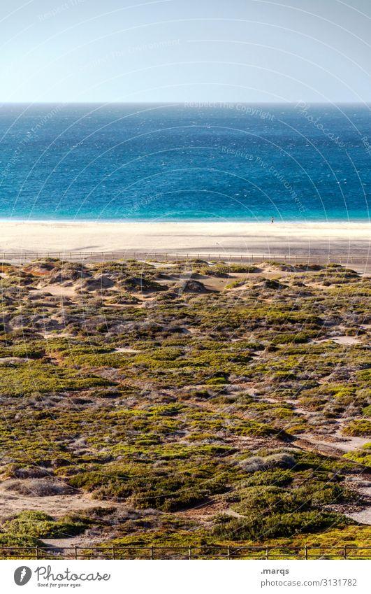 Leerer Strand Natur Meer Himmel Schönes Wetter Wolkenloser Himmel leer Horizont Tourismus Erholung