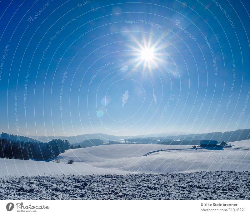 Winterlich Ferien & Urlaub & Reisen Tourismus Ausflug Schnee Winterurlaub Berge u. Gebirge wandern Umwelt Natur Landschaft Luft Himmel Schönes Wetter Baum Feld