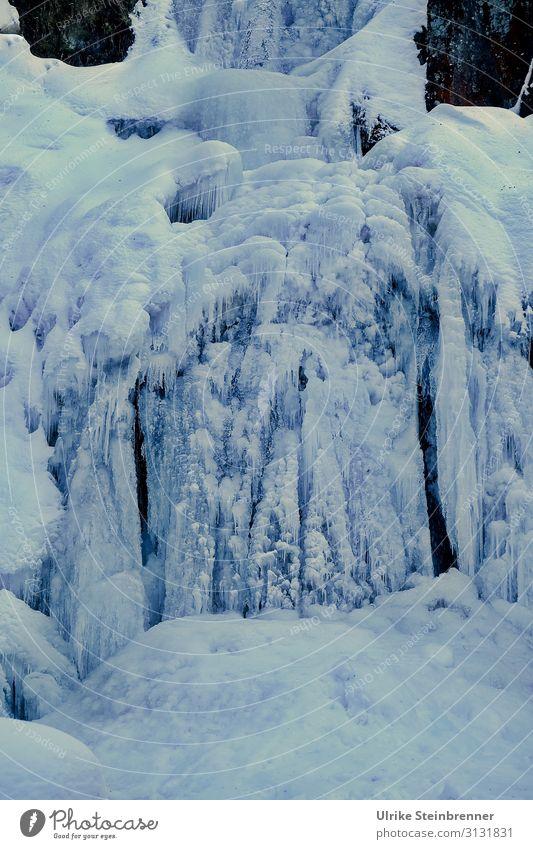 Triberger Wasserfall Umwelt Natur Landschaft Winter schlechtes Wetter Eis Frost Schlucht frieren schlafen außergewöhnlich dunkel kalt natürlich stagnierend