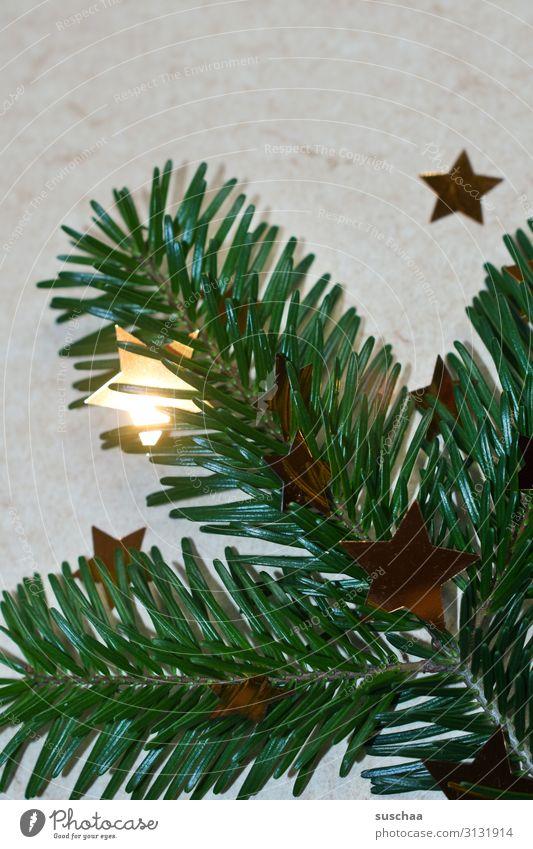 advent, advent - ein sternlein brennt .. Weihnachten & Advent Tannenzweig Stern (Symbol) leuchten Dekoration & Verzierung Hintergrund neutral grün Adventskranz