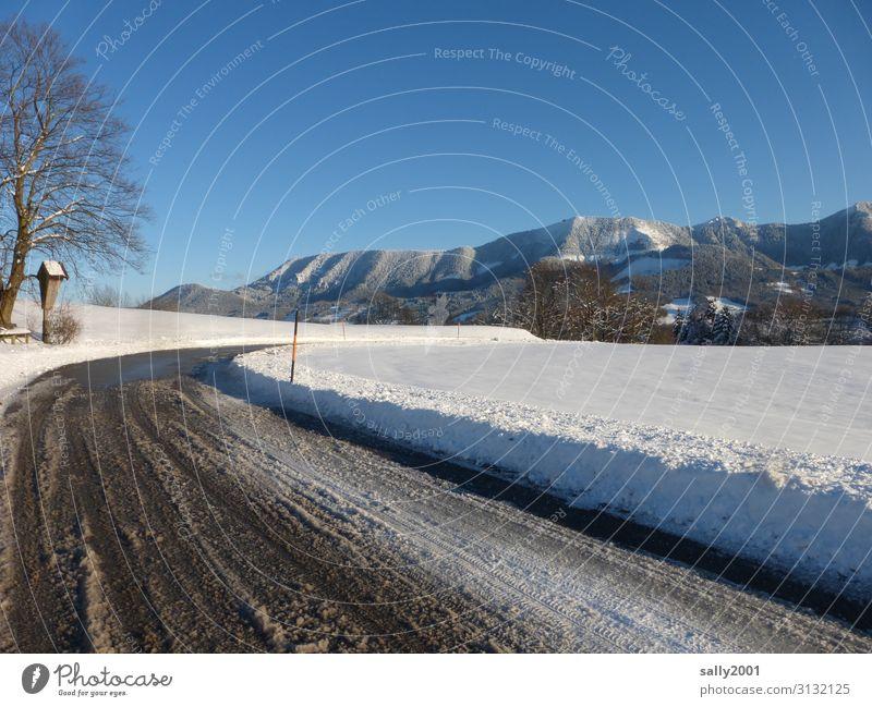Eiszeit | Winterausrüstung erforderlich... Landschaft Wolkenloser Himmel Sonnenlicht Schönes Wetter Frost Schnee Baum Alpen Berge u. Gebirge Samerberg