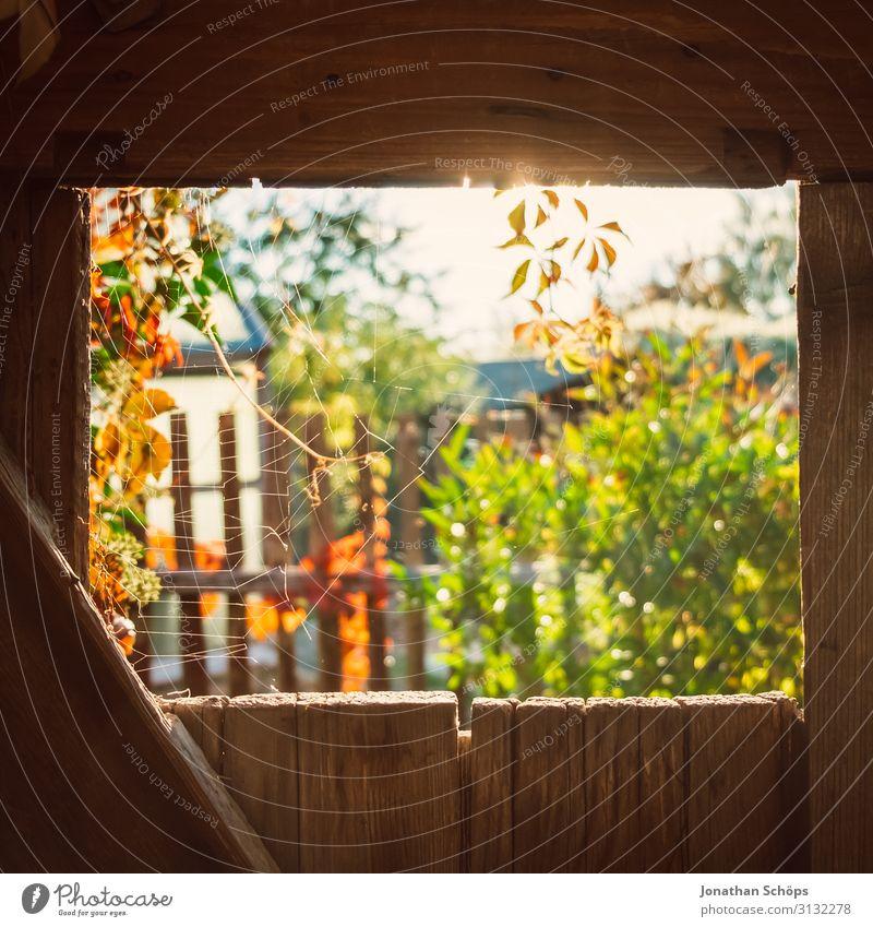 Blick durch eine Holztür im Garten im Herbst Architektur Hintergrundbild schön Scheune Schuppen Lagerschuppen mehrfarbig Textfreiraum oben Textfreiraum unten