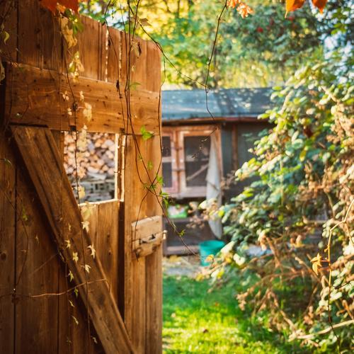 Blick durch eine Holztür im Garten im Herbst Natur Sommer schön Landschaft Haus Erholung ruhig Fenster Hintergrundbild Architektur Aussicht Tür Zukunft