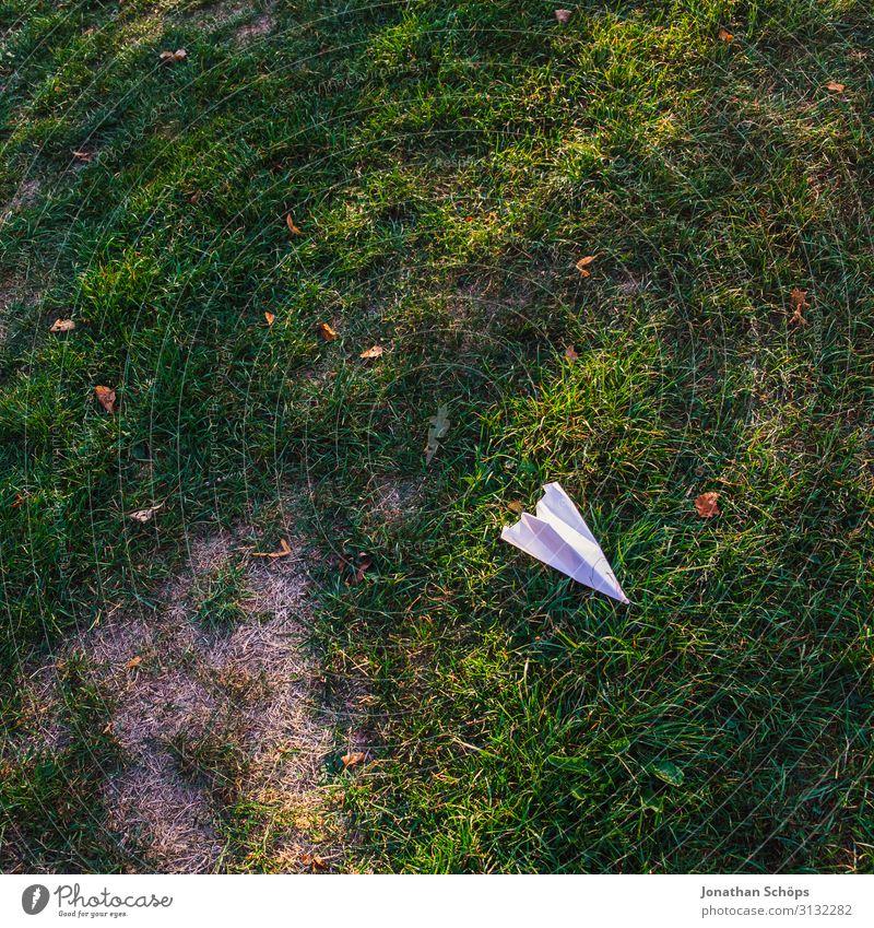 Papierflieger auf der Wiese Herbst Flugzeug mehrfarbig Textfreiraum oben träumen Falte Garten Gartenarbeit Gras Außenaufnahme Spielzeug Textfreiraum unten
