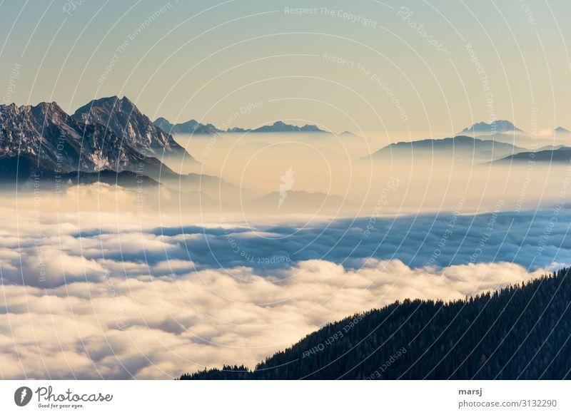 Stolz erhebt sich der Kamm und der Grimming über das Nebelmeer Berge u. Gebirge Ennstaler Alpen Panorama (Aussicht) Sonnenaufgang Sonnenlicht Kontrast Licht