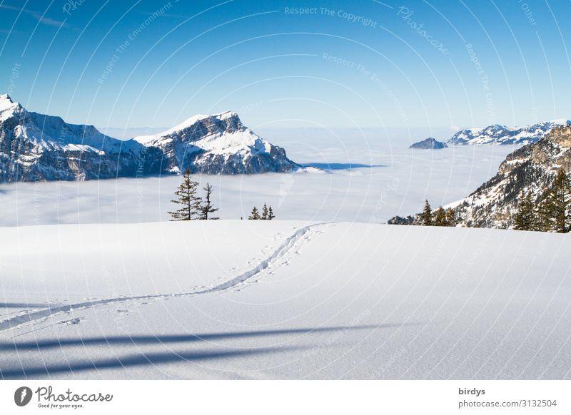 Spuren im Schnee Ferien & Urlaub & Reisen Tourismus Freiheit Winter Winterurlaub Berge u. Gebirge Wintersport Natur Landschaft Wolkenloser Himmel Horizont