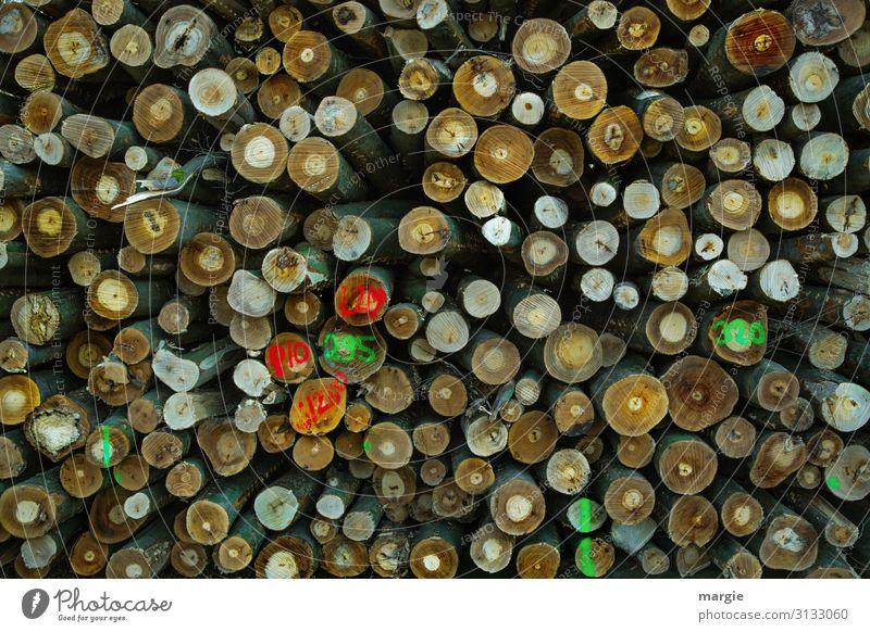 Viele Holzstämme mit Markierungen gestapelt Energiekrise Umwelt Natur Baum Wald sparen mehrfarbig grün Vergänglichkeit Wachstum Wandel & Veränderung Zukunft
