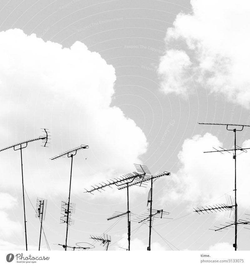 Stadtgiraffen (2) Himmel Wolken Leben Zusammensein Kommunizieren Technik & Technologie Ordnung Schönes Wetter entdecken planen Güterverkehr & Logistik