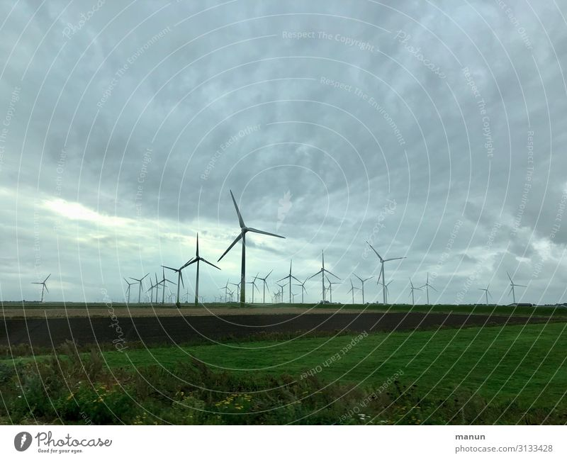 Windräder Natur Landschaft Umwelt Feld Wetter Energiewirtschaft Technik & Technologie Zukunft Klima Wandel & Veränderung planen Windkraftanlage Umweltschutz