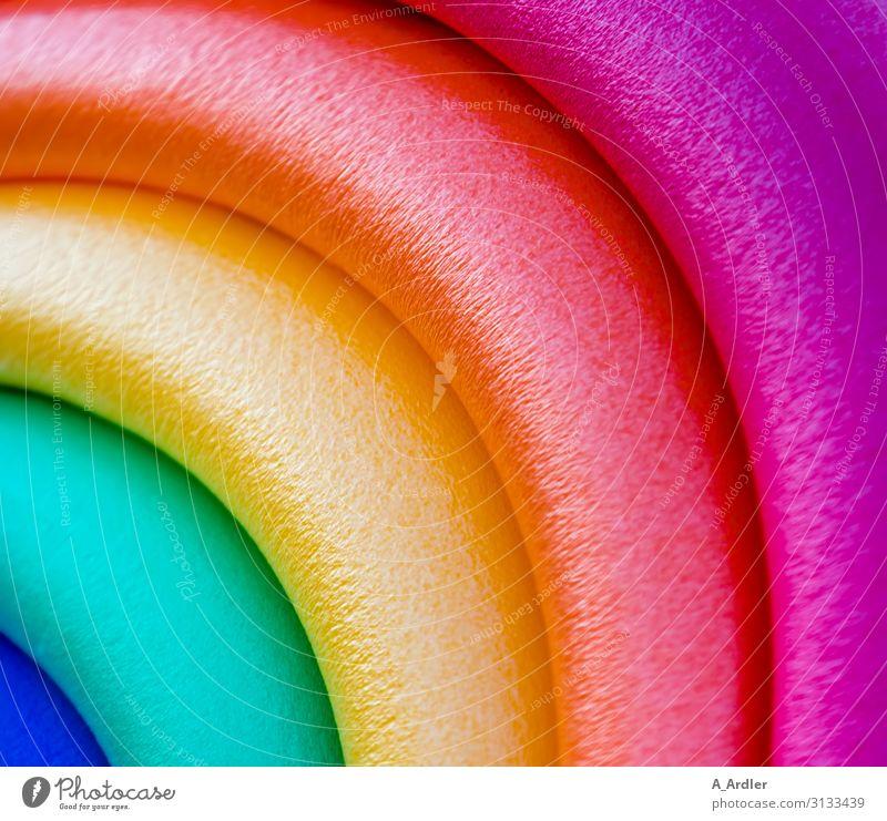 Regenbogenfarben Stil Design Entertainment Party Veranstaltung Feste & Feiern Karneval Kunst Kunstwerk Zirkus Schlauch Wurstwaren Schaumstoff Kunststoff