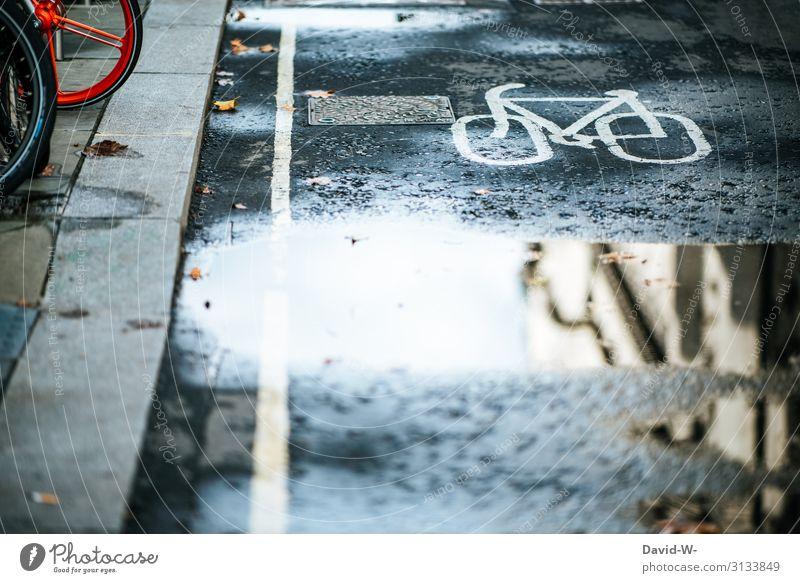 Radweg Fahrrad Fahrradweg Fahrradfahren wege Pfütze Spiegelung Fahrradtour Straße Verkehr Straßenverkehr Außenaufnahme Verkehrsmittel Menschenleer Stadt