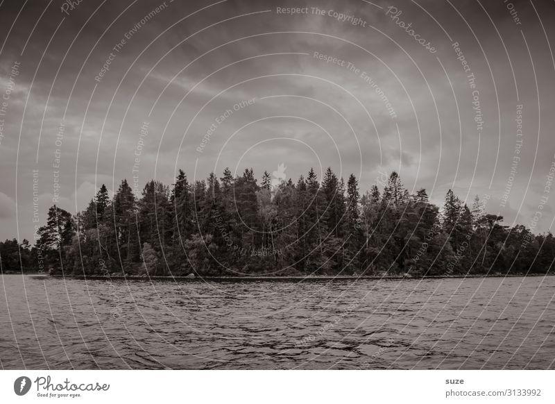 Finsterness Abenteuer Insel Umwelt Natur Landschaft Urelemente Wasser Himmel schlechtes Wetter Baum Wald Seeufer Traurigkeit dunkel grau Trauer Sehnsucht