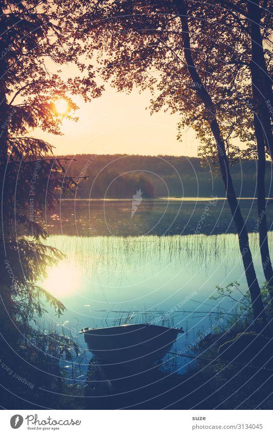 Wasserbett ruhig Ferien & Urlaub & Reisen Ausflug Natur Landschaft Baum Seeufer Bootsfahrt Ruderboot Wasserfahrzeug entdecken liegen Gefühle Stimmung Romantik