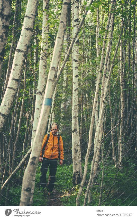 Zwischendurch Mensch Ferien & Urlaub & Reisen Natur Mann Pflanze grün Landschaft Wald Erwachsene Umwelt natürlich Wege & Pfade wild wandern Wachstum Klima