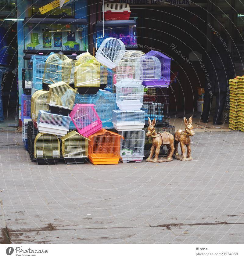 Leerstand kaufen Tierhandlung Basar Markt Ladengeschäft Spielzeug Käfig Vogelkäfig Stofftiere Kunststoff Fröhlichkeit hell Kitsch lustig niedlich viele