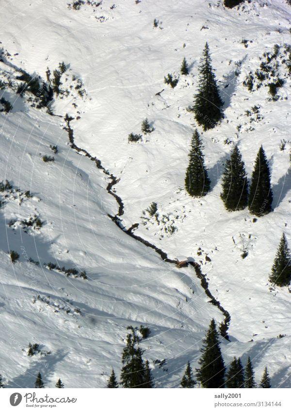 Bergwelt... Natur Landschaft Winter Schnee Baum Alpen kalt weiß Abenteuer Freiheit Tal Allgäuer Alpen Hütte Farbfoto Außenaufnahme Menschenleer Tag Schatten