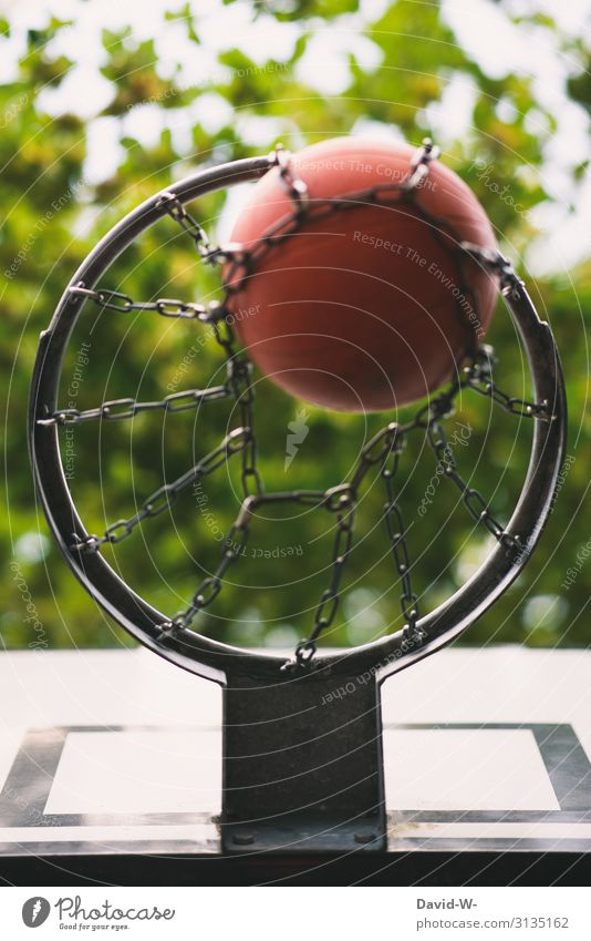 Basketball im Korb versenkt Basketballkorb Basketballplatz Spielen Ball Treffer Treffen hobby spielend Spaß haben Sport sportlich Ballsport Freizeit & Hobby