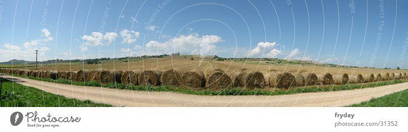 Feld in weite ... Panorama (Aussicht) Weitwinkel Stroh Strohballen Frankreich Fußweg Wolken Korn groß Panorama (Bildformat)