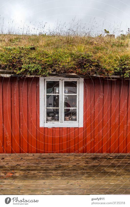 Bewachsen Himmel Ferien & Urlaub & Reisen Natur Pflanze schön grün weiß rot Wolken ruhig Fenster Holz Wiese Gras Fassade wild