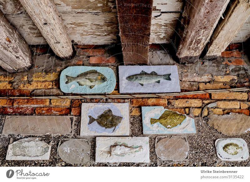 Art of Fishermen Ferien & Urlaub & Reisen Tourismus Sightseeing Städtereise Häusliches Leben Haus Dekoration & Verzierung Beruf Fischer Kunst Kunstwerk Chioggia