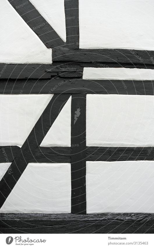 abgestorben | nun aber eine tragende Rolle Holz Linien Funktion schwarz weiß Fachwerk alt Putz