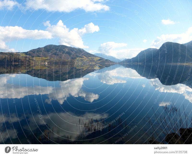 Sonntagsruhe... Natur Wolken Winter Schönes Wetter Alpen See Mondsee Österreich Zufriedenheit Einsamkeit Erholung Idylle ruhig stagnierend Salzkammergut