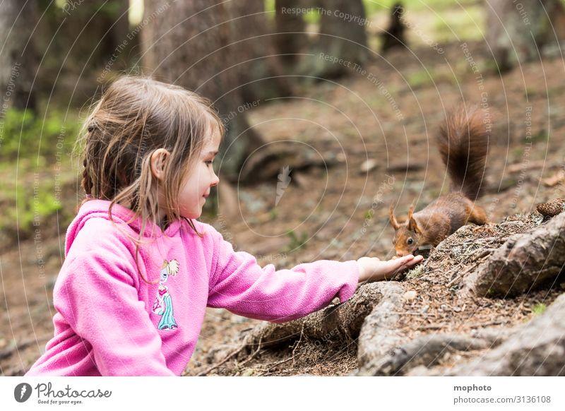 Eichhörnchen füttern #2 Ferien & Urlaub & Reisen Ausflug Kind Mensch feminin Kleinkind Mädchen Kindheit 1 3-8 Jahre Natur Tier Baum Wald Wildtier Fressen sitzen