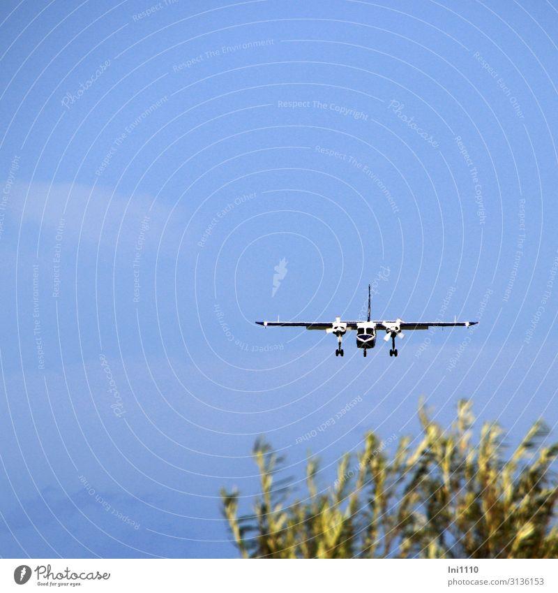 Starten und Landen von der Düne Natur Luft Himmel Sommer Nordsee Insel Luftverkehr Flugzeug Propellerflugzeug Flugplatz blau grün schwarz weiß Helgoland