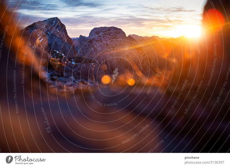 Morgens am Berg Natur Landschaft Sonnenaufgang Sonnenuntergang Sonnenlicht Herbst Klima Schönes Wetter Felsen Alpen Berge u. Gebirge Gipfel Kitsch natürlich