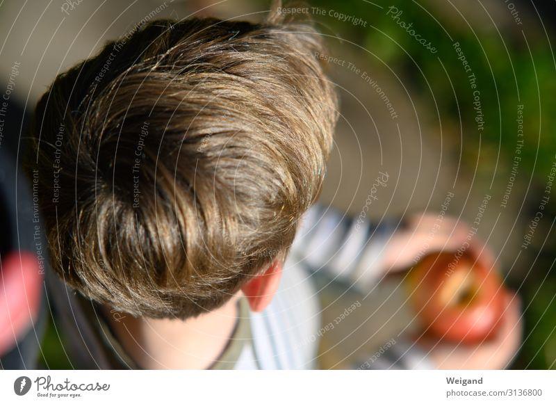 Generation Kind Mensch Erholung Erwachsene Familie & Verwandtschaft Junge Kindheit Freundlichkeit 8-13 Jahre Vertrauen Wachsamkeit Vater Geborgenheit